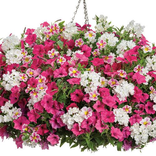 26_botanicalbouquet_rgb.jpg