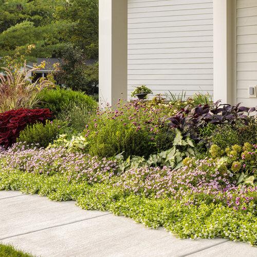front_porch_garden_228.jpg