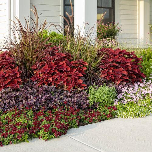 front_porch_garden_294.jpg