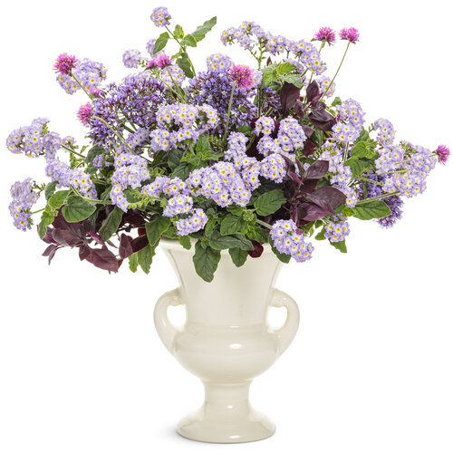 heliotropium_augusta_lavender_cut_flower_arrangement.jpg
