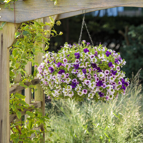 lavender_lipstick_basket_in_scene_04.jpg