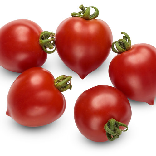 lycopersicon_tempting_tomatoes_goodhearted_macro_01.jpg