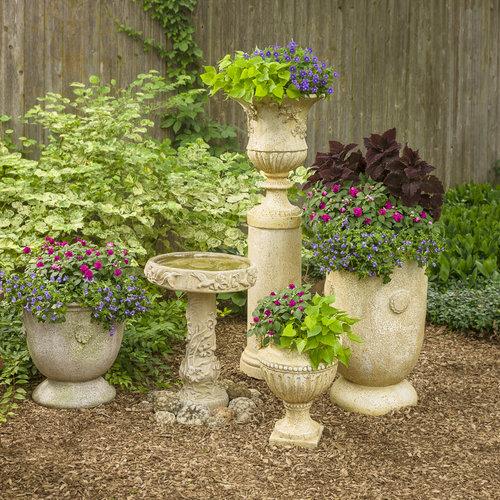 perennial_garden_color_2017_17.jpg