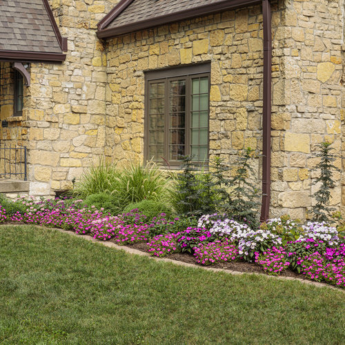 portulaca_and_pentas_bed_03_1.jpg