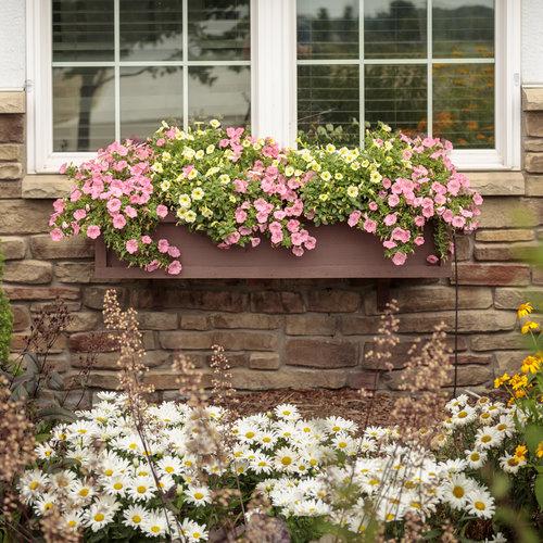 residential_gardens_098.jpg