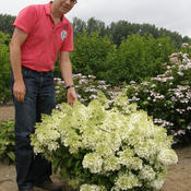 bobo_hydrangea_with_jan_cropped.jpg