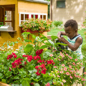 childrens_garden_house_465.jpg