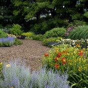 display_gardens_apj17-30.jpg