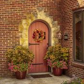 front_door_coleus_13.jpg