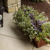front_porch_wood_windowboxes_17.jpg