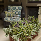 front_porch_wood_windowboxes_19.jpg