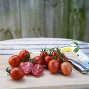 Tempting Tomatoes™ 'Garden Gem'