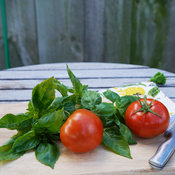 Amazel Basil® and Tempting Tomatoes™ 'Garden Treasure'