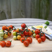 Tempting Tomatoes® Goodhearted®