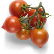 goodhearted_tomato_macro_02.jpg