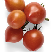 goodhearted_tomato_macro_03.jpg