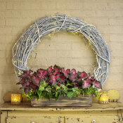 heart_to_heart_planter_1_scarlet_flame_pathos_ivy_02.jpg