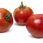 lycopersicon_tempting_tomatoes_garden_treasure_macro_01.jpg