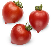 lycopersicon_tempting_tomatoes_goodhearted_macro_03.jpg