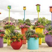 pollinator_patio_064.jpg