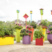 pollinator_patio_074.jpg