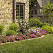 portulaca_and_pentas_bed_40_1.jpg