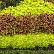 pvg_gardens_014.jpg