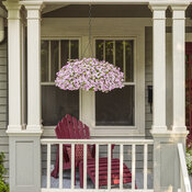 scene_hanging_baskets_at_front_facade_30.jpg