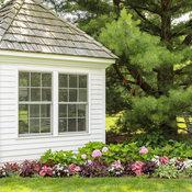 she_shed_garden_27.jpg