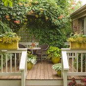 small_patio_c_2017_016.jpg