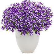 supertunia_violet_star_charm_beautymono.jpg