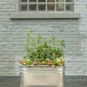 urban_containers_166.jpg
