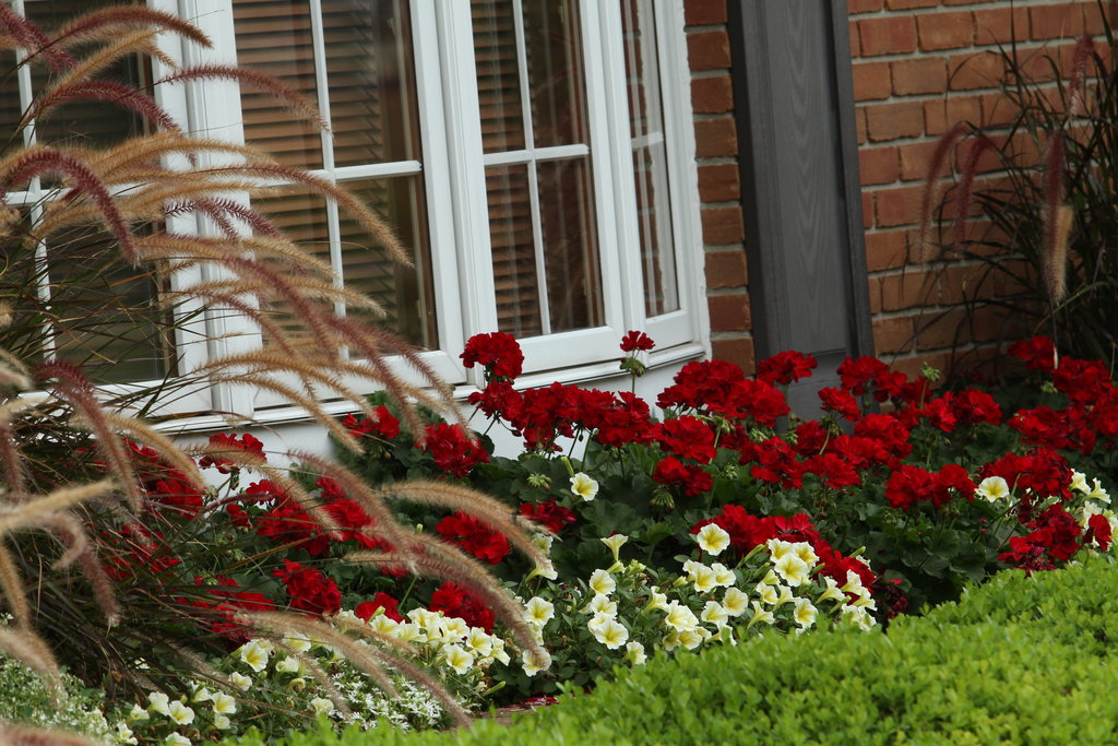Front Flower Bed Ideas Curb Appeal Full Sun