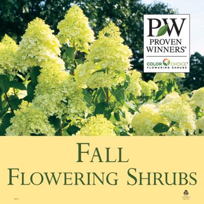 Fall Flowering Shrubs 23x23 Sign Proven Winners