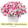 Above and Beyond FLOWER PILLOW®