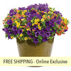 Autumn Breeze FLOWER PILLOW®