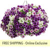Avalon FLOWER PILLOW®