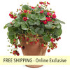 Berried Treasure Red Strawberry FLOWER PILLOW®