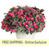 Gloria Rose FLOWER PILLOW®