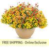 Honeybelle FLOWER PILLOW®