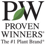 Proven Winners Perennial