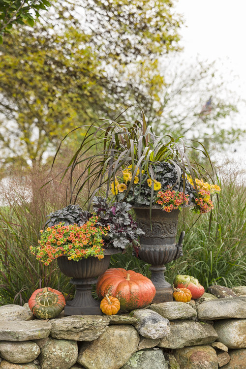 autumn_scene_338.jpg