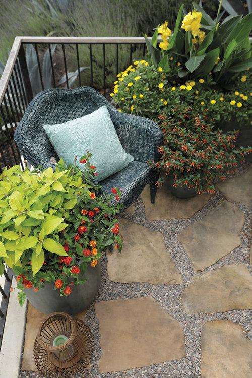 dt_patio_scenes_5.jpg