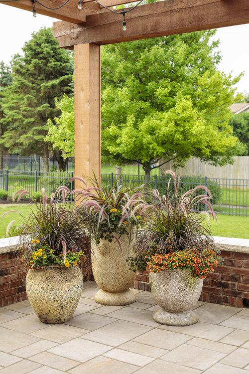 grass_combos_on_patio_016_1.jpg