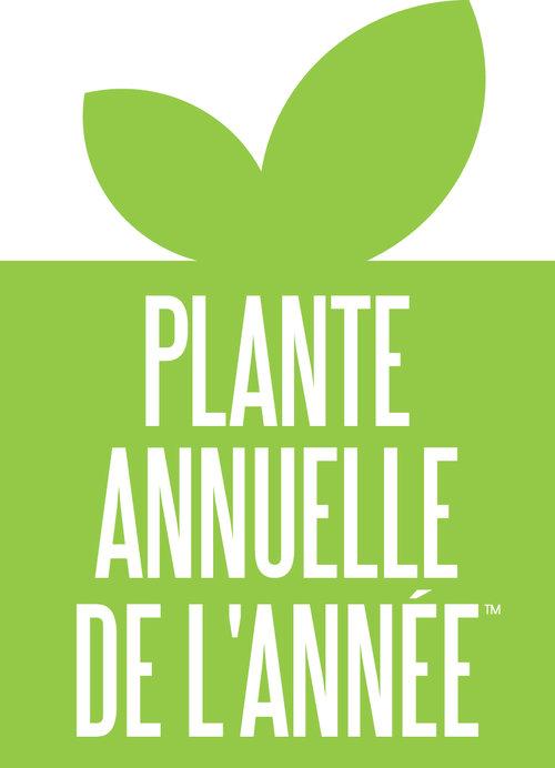 plante_annuelle_de_lannee.jpg