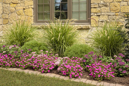 portulaca_and_pentas_bed_31_1.jpg