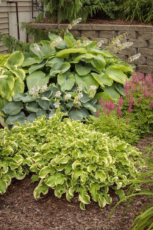 residential_gardens_195.jpg