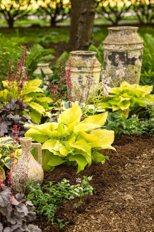 shade_garden_085.jpg