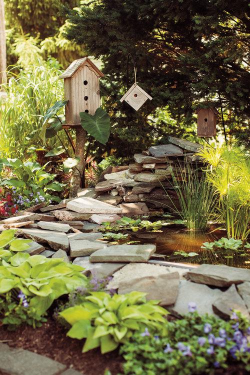 watergarden_6-267.jpg