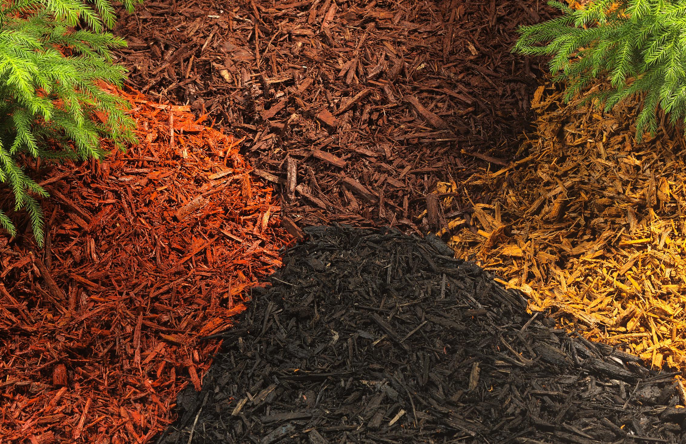 The Dirt on Dirt - Potting Soil | Proven Winners